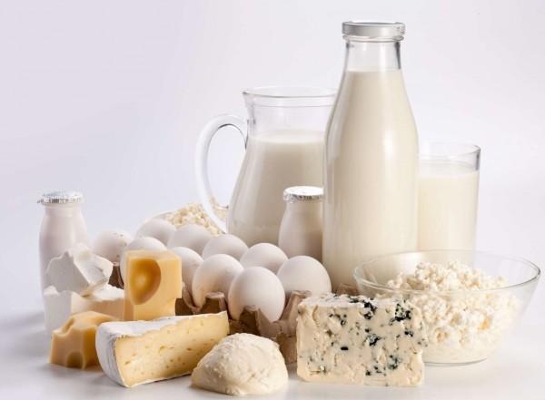 Бизнес-план: заработок на производстве молочных продуктов