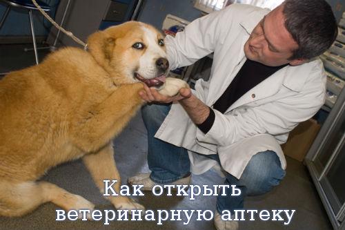 Как открыть ветеринарную аптеку